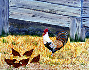 Cocks Acrylic Prints - Garden Strut Acrylic Print by Barbara Griffin