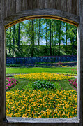 John Haldane Prints - Garden Through an Open Window Print by John Haldane