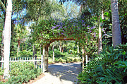 Florida Florals Photos - Garden Walkway by Aimee L Maher