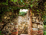 Old Wall Prints - Garden Walls Print by Lutz Baar