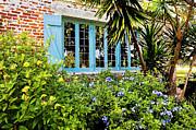 Garden Window Db Print by Rich Franco
