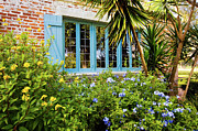 Tile Roof Posters - Garden Windows Poster by Rich Franco