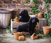 Pastel Dog Paintings - Gardeners corner by John Silver