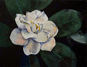 Gardenia Posters - Gardenia Oil Painting Poster by Michael Creese