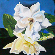 Gardenias Framed Prints - Gardenias Framed Print by Shelley Overton