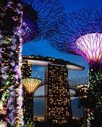 Eddie Cheng - Gardens by the Bay #01