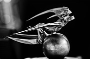 Black And White Photos Prints - Gargoyle Hood Ornament 2 Print by Jill Reger