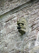 Stone Prints - Gargoyle on the side of Castle Doune Scotland Print by Lesley Nolan