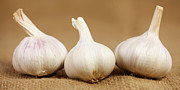 Garlic Framed Prints - Garlic bulbs Framed Print by Falko Follert