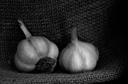 High Framed Prints - Garlic Duo Framed Print by Constance Fein Harding