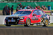 Supercars Photos - Garth Tander by Daniel Harper