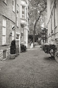 Pavement Metal Prints - Gaslight Court Chicago Old Town Metal Print by Christine Till