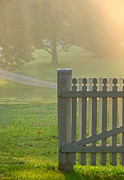 Picket Fence Metal Prints - Gate in Morning Fog Metal Print by Olivier Le Queinec