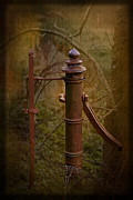 Rusted Framed Prints Framed Prints - Gate Post Framed Print by Liz  Alderdice