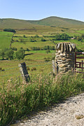 Barbed Wire Fences Photos - Gatepost in the Sperrin Mountains by Jane McIlroy