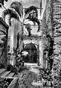 Charlotte Amalie Prints - Gates Of St Thomas 1 BW Print by Mel Steinhauer