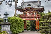 Adam Romanowicz - Gateway - Japanese Tea Garden - Golden Gate Park