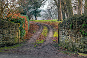 Hedge Posters - Gateway to Autumn Poster by Adrian Evans