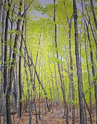 Quebec Paintings - Gatineau in Spring by Lori Kallay