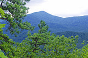 Charles Willis - Gatlingburg Mountains
