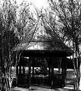Michael Aviles Posters - Gazebo in the park Poster by Michael Aviles