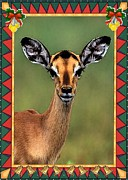 Gazelle Paintings - Gazelle Antelope Blank Christmas Greeting Card by Olde Time  Mercantile