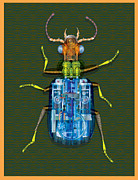 Flying Bugs Framed Prints - Gear Box Lrg Framed Print by Greg Gwynne