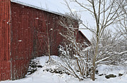 Red Barn In Winter Photos - Geauga County Ohio Winter by Lila Fisher-Wenzel