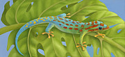 Chameleon Paintings - Gecko by Laura Regan