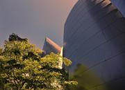 Chuck Kuhn - Gehry II