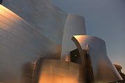 Chuck Kuhn - Gehry Tones IV