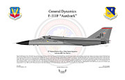 Fighter-bomber Framed Prints - General Dynamics F-111F Aardvark Framed Print by Arthur Eggers