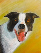 Pastel Dog Paintings - Gentle Jack  by Francisco Sanchez Salas