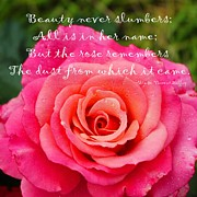 Dewdrops Digital Art Posters - Gentle Rose Always Remembers - Rose - Quote Poster by Barbara Griffin