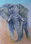 South African Pastels Prints - Gentle Warning Print by Linda Harrison-parsons