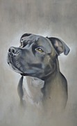 Staffordshire Bull Terrier Paintings - George the Staffie by David Mullins