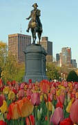 Skyscraper Photographs Photos - George Washington at the Boston Public Garden by Juergen Roth