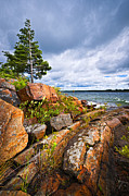 Rugged Coast Framed Prints - Georgian Bay Framed Print by Elena Elisseeva