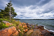 Rugged Photo Prints - Georgian Bay shore Print by Elena Elisseeva