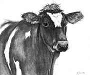 Cow Drawings Framed Prints - Georgie Framed Print by J Ferwerda