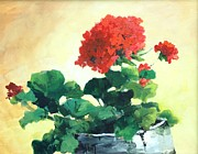 Red Geraniums Framed Prints - Geranium in a Pot Framed Print by Mary Scott