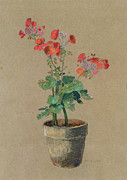 Floral Prints Framed Prints - Geraniums in a pot  Framed Print by Odilon Redon