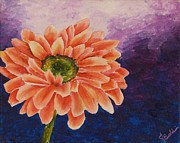 Gerbera Daisy Paintings - Gerbera Diasy by Jasmin Nelson-Baldwin