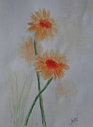 Gerbera Drawings - Gerbera in Orange  by Kerstin Berthold