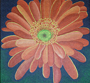 Research Paintings - Gerbera by Megan Zilm