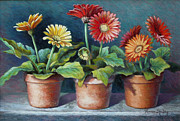 Daisies Pastels Posters - Gerberas Three Poster by Theresa Shelton