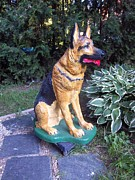 Dog Sculpture Framed Prints - German Sheperd Dog Framed Print by Gordon Wendling