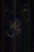 Dogs Digital Art Originals - German Shepherd - Alsatian by Andrew Madden