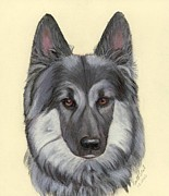 Ruth Seal - German Shepherd Dog 3