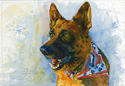 John D Benson - German Shepherd